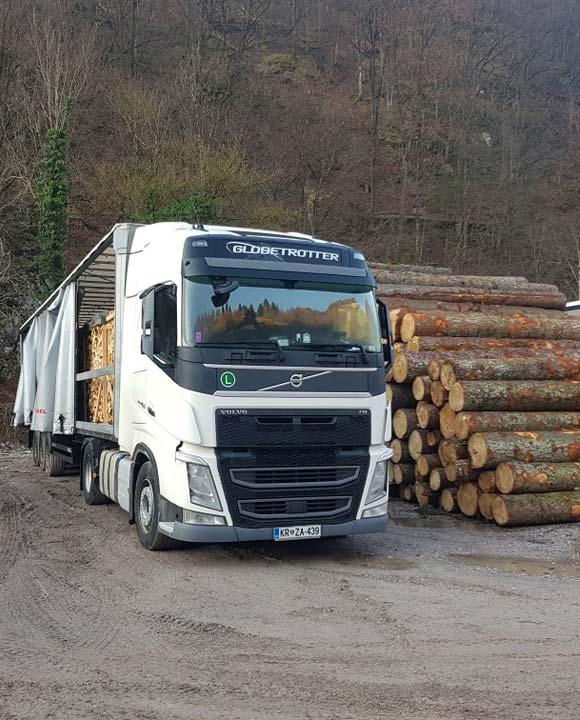 Prevozništvo - tovornjak ob hlodovini